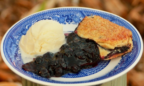 Spiced Blueberry Rustic Tart